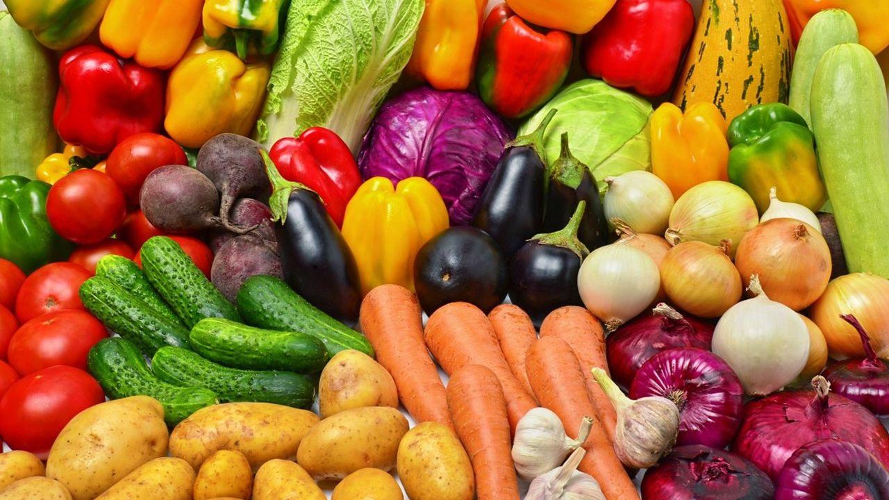 Ruim veertig miljoen naar kennisinstituut voor voedsel van de toekomst