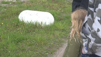 Wilde ooievaars doen paringsdans bij nest in Venlose tuin